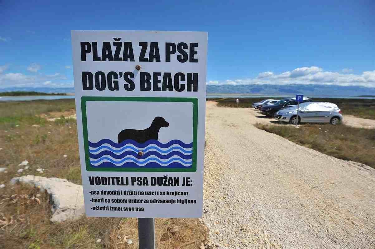 Hol vannak kutyabarát strandok az Adrián?